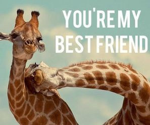 You're my best friend, jiraffe!! :) I didn't find one with a bunny and ...