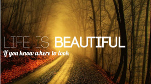life is beautiful quotes wallpapers Life is Beautiful Traveling Around ...