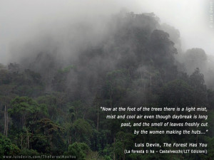 Rainforest fog, from Luis Devin's anthropological research in Central ...