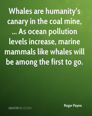 Whales are humanity's canary in the coal mine, ... As ocean pollution ...