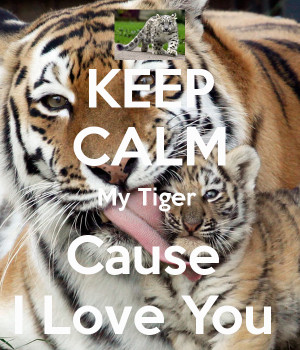 my tiger dark by j c i love you a tigers way of i love you tiger