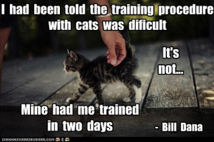 ... Cats Was Difficult It's Not Mine Had Me Trained In Two Days - Bill