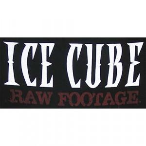 Ice Cube Gangsta Rap Made Me Do It HipHop t-shirt