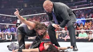 Brie Bella Stephanie McMahon 2014