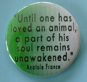 anatole france animal quote badge or magnet by thedogcoatlady, $1.00