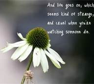Beautiful quotes about dying - Bing Images