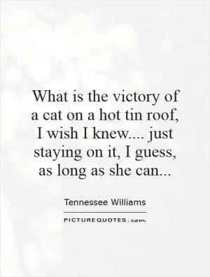 See All Cat Quotes