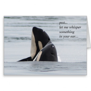 orca_whale_killer_whale_hug_greeting_card ...