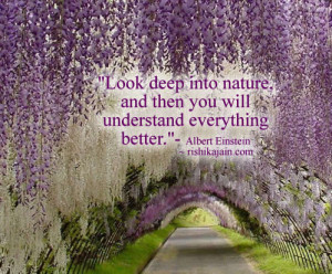 Albert Einstein,Nature / Patience Quotes – Inspirational Quotes ...