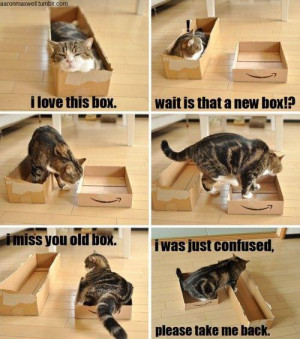 Funny Jokes / Pictures Details | Category: Funny Pictures ...