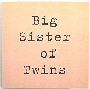 Happy Birthday Twin Sister Quotes