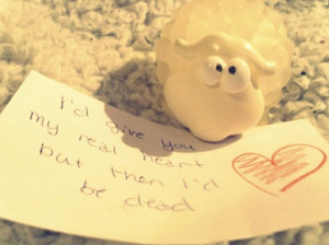 cute, heart, love, quote, sheep, text