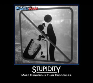 Stupidity_is_Dangerous_Funny_Picture
