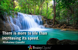 There is more to life than increasing its speed. - Mahatma Gandhi