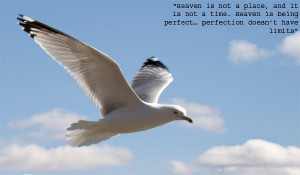 Jonathan Livingston Seagull Quotes