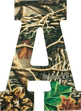 ... Wall Art, Country Girls, Cabelas, Camo Rooms, Boys Room, Letter Wall