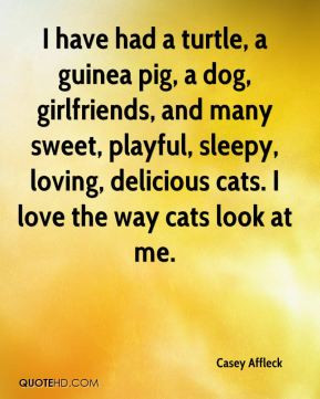 Casey Affleck - I have had a turtle, a guinea pig, a dog, girlfriends ...
