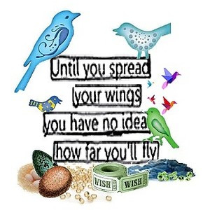 ... your wings and fly quote text birds eggs colorful inspirational words
