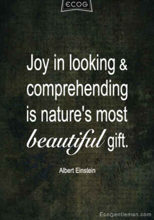 Quotes by Albert Einstein – Joy in looking and comprehending is ...