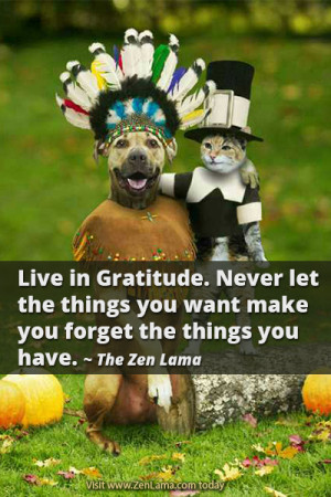 Live in Gratitude. Never let the things