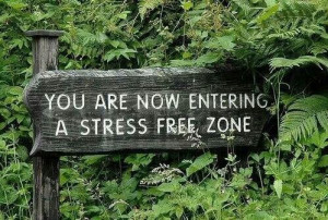 Stress free zone...