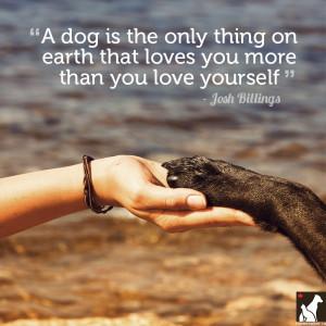 Josh Billings dog quote