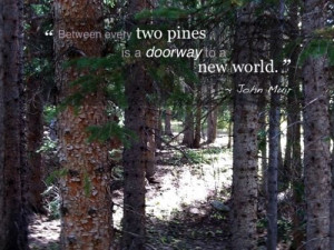 john muir wilderness quotes