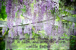 Willa Cather quote calm and storm