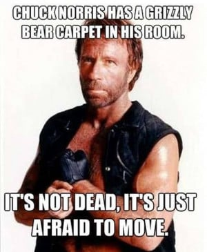 celebs celebs chuck norris funny pics funny pictures humor lol leave a ...
