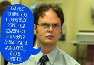 Dwight Schrute Funny Quotes Dwight schrute fact quotes