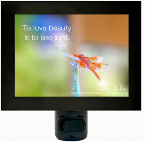 "Light of the Dragonfly"" Inspirational Quote Dragonfly Night Light"