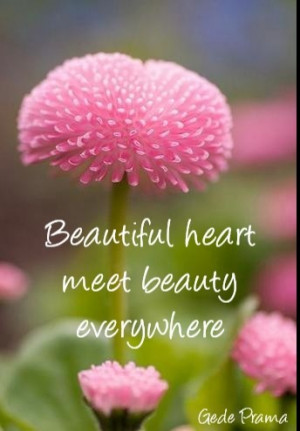Beautiful heart meet beauty everywhere