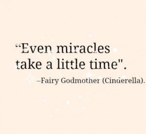 Cinderella Fairy Godmother Quote