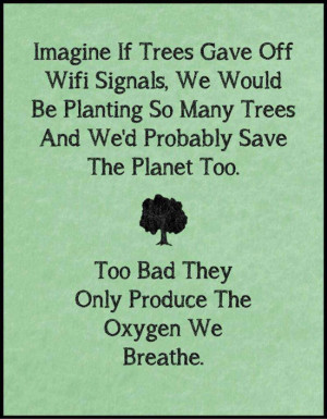 Imagine if trees gave of Wifi signals…