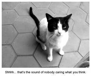 Funny Cat Quotes Clip Art Picture Comments graphics