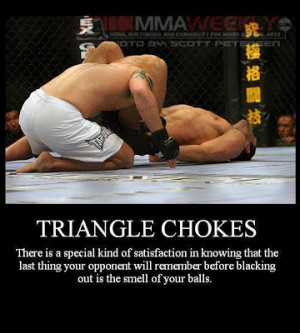 Philosophy of the Triangle Choke