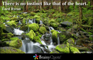Instinctive quote #1