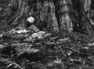 Gilbert H. Grosvenor first full-time editor of National Geographic ...