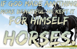 Horse Quote: Horses: If God made anything more beautiful,...