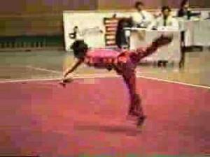 Wushu Chain Whip