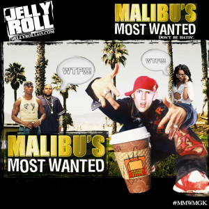 Malibus Most Wanted Dont Be Hatin Jelly Roll picture