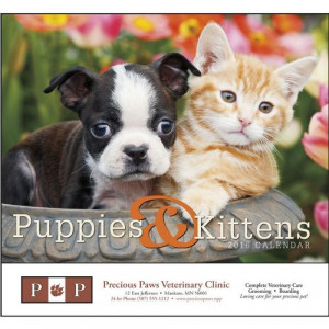 Puppies And Kittens Quotes #7
