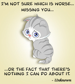 Quote about missing someone
