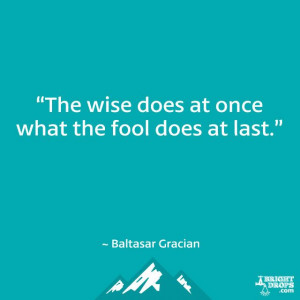 "... wise does at once what the fool does at last."" ~ Baltasar Gracian"