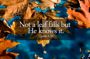 Quotes About Allah's Omniscience (God's Knowledge and Awareness of ...