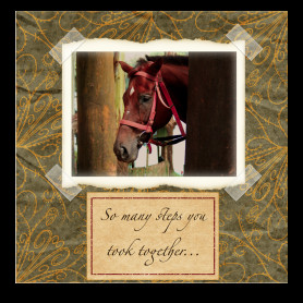 Sympathy Card for Loss of a Horse