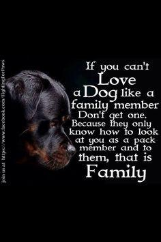 Dogs-man's best friend! :-)