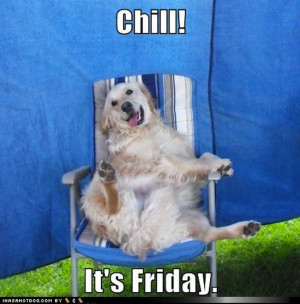 Happy Friday Funny Pictures