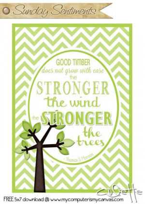 ... wind, the stronger the trees. #PresMonson quote #mycomputerismycanvas