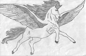 Image Search Pegasus...